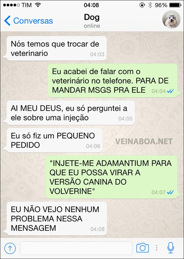 08 Mensagens se meu cachorro tivesse Whatsapp - Gnvision - 2015 - 2016 2