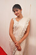 Nikitha Narayan saree photo shoot-thumbnail-14