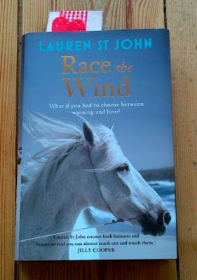 Race the Wind by Lauren St John