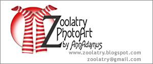 PhotoArt by Zoolatry