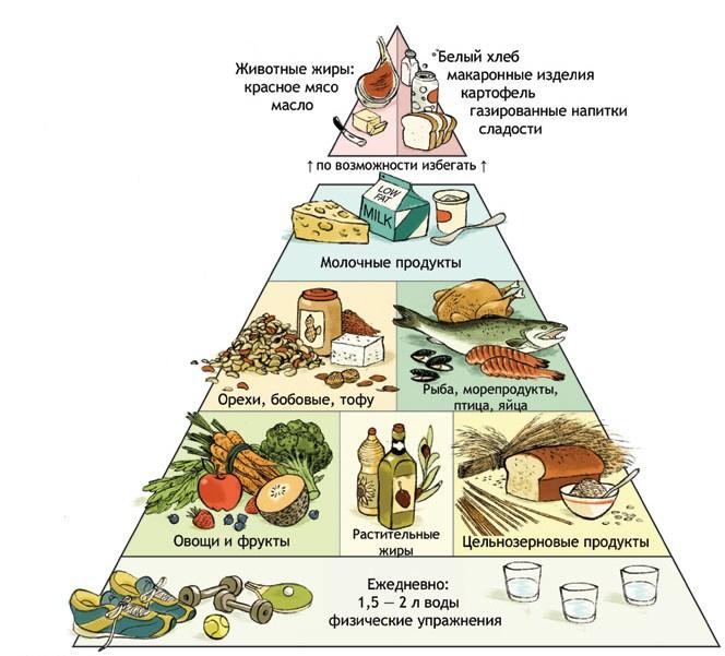 правильное питание чем перекусывать