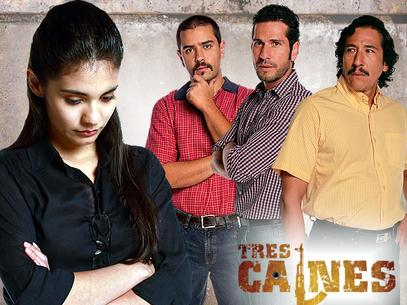 Ver Los tres Canes captulo 51 Viernes 17 de Mayo