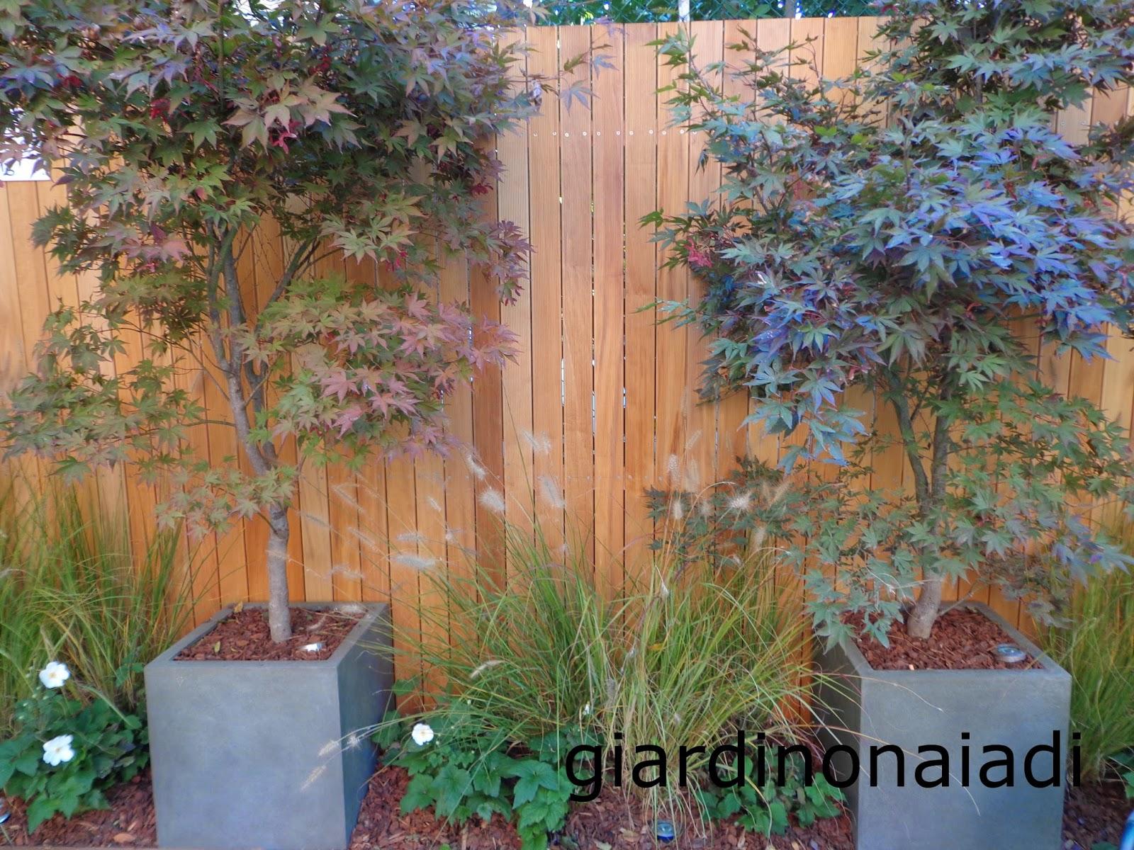 Il giardino delle Naiadi: UN GIARDINO AL VENTO