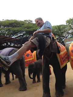 Elephant tipping Mike