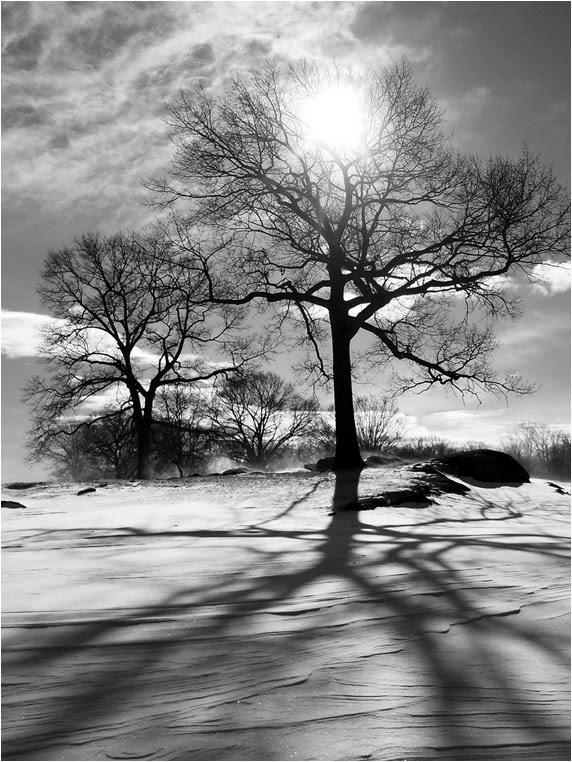 emphoka, photo of the day, Gerraughty, Nikon Coolpix S570