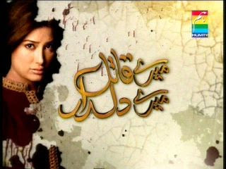Hum TV Drama Meray Qatil Meray Dildar Latest Episode