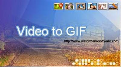 WaterMark Software Video to GIF 4.4