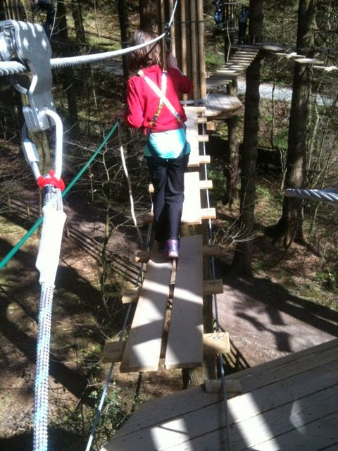 Go Ape Junior Grizedale