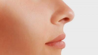 Ngilangin Komedo Di Hidung Dengan Cara Alami
