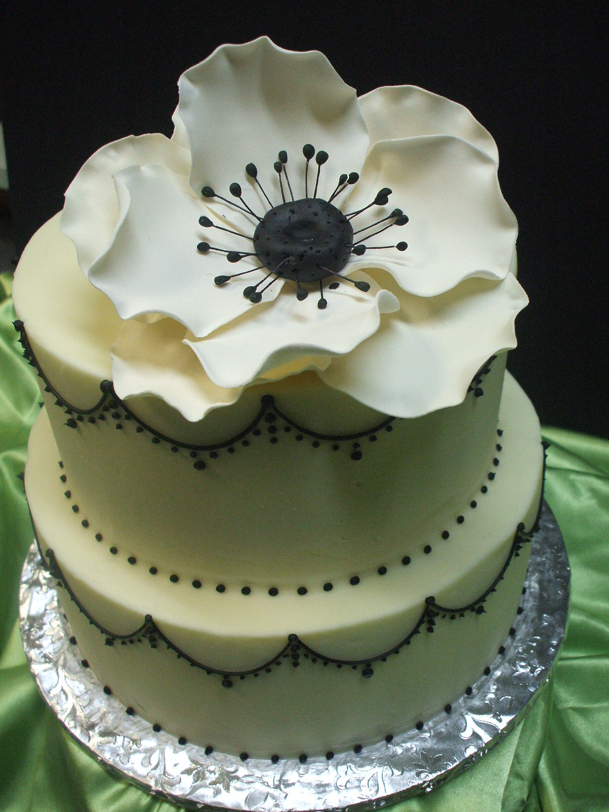 Thats a cake black and white anemone mightylinksfo