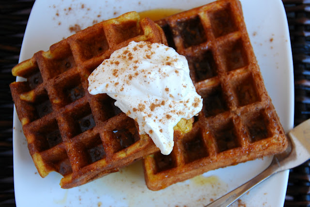 overhead closeup of two pumpkin waffles with whipped cream on top on a white plate
