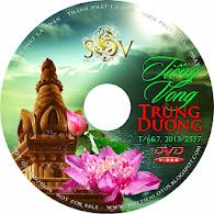 SHHV DVD T/6 2013