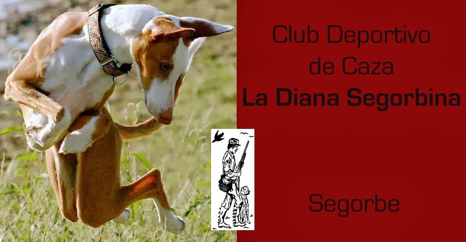CLUB DEPORTIVO DE CAZA LA DIANA SEGORBINA