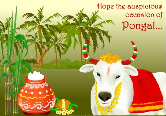Happy Pongal greetings