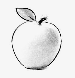 mela - disegno
