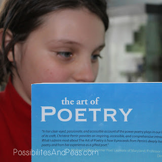 The Art of Poetry Review