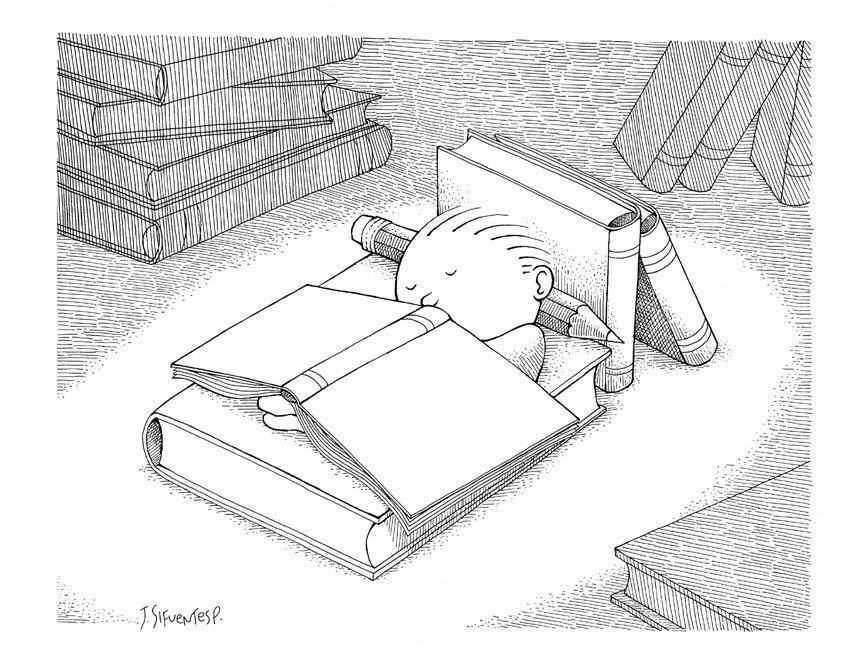 Worksheet. Los dibujos de Amadeus por Jayme Sifuentes  Dibujando lectores