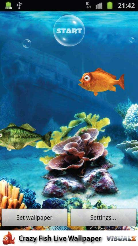 Crazy Fish Live Wallpaper 1.0 apk Android game