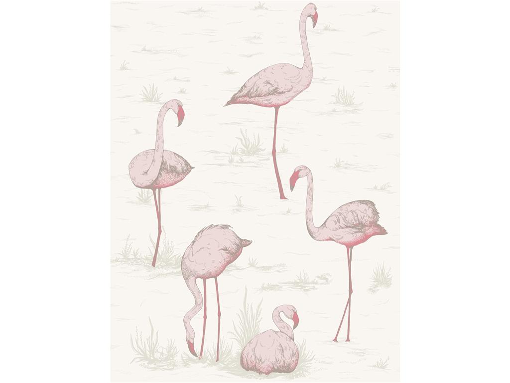 http://4.bp.blogspot.com/-q7bC1Wlngp8/UVuGG4mtOeI/AAAAAAAACXQ/tCBglMLSurE/s1600/Cole+Son+Flamingos+wallpaper.jpg