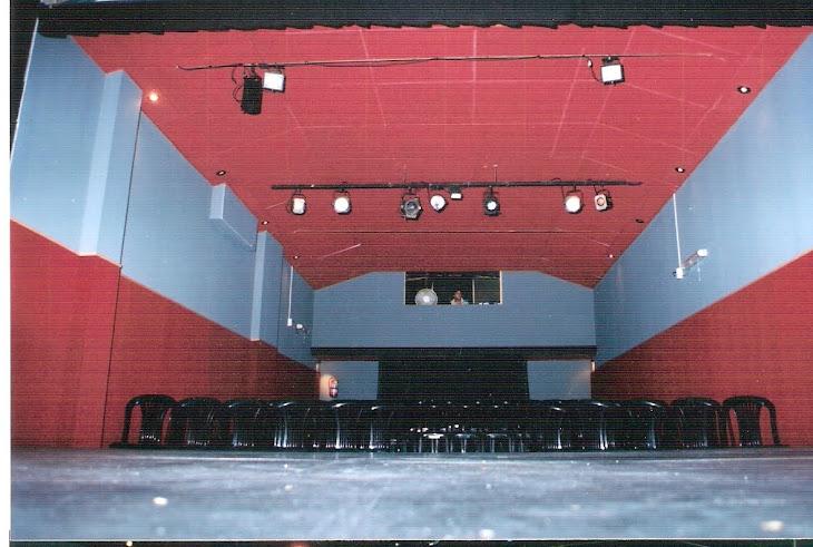 Platea desde escenario