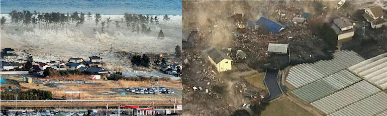 2)Разрушительные последствия наката и отката цунами.