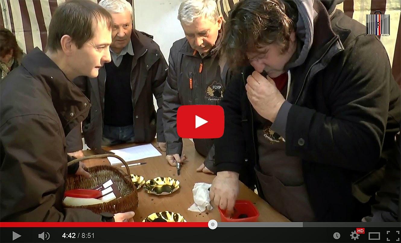 Marché aux truffes et au gras à la Fête de la Truffe de Sorges (24).