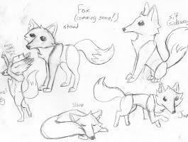 Cartoon Animal Drawing Books