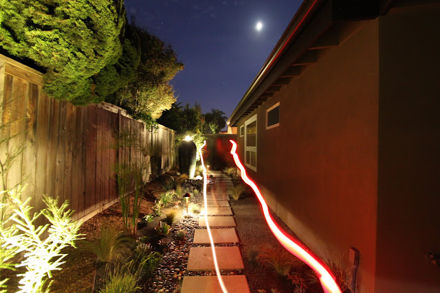 lighting a mid-century modern garden design
