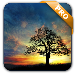 Sunset Hill Pro Live Wallpaper v1.0.1