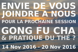 NEW:Stage thé et gong fu cha 2016!