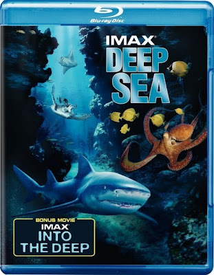 Into the Deep (1994) 720p BRRip 992MB mkv Latino AC3 5.1 ch (Resubida)