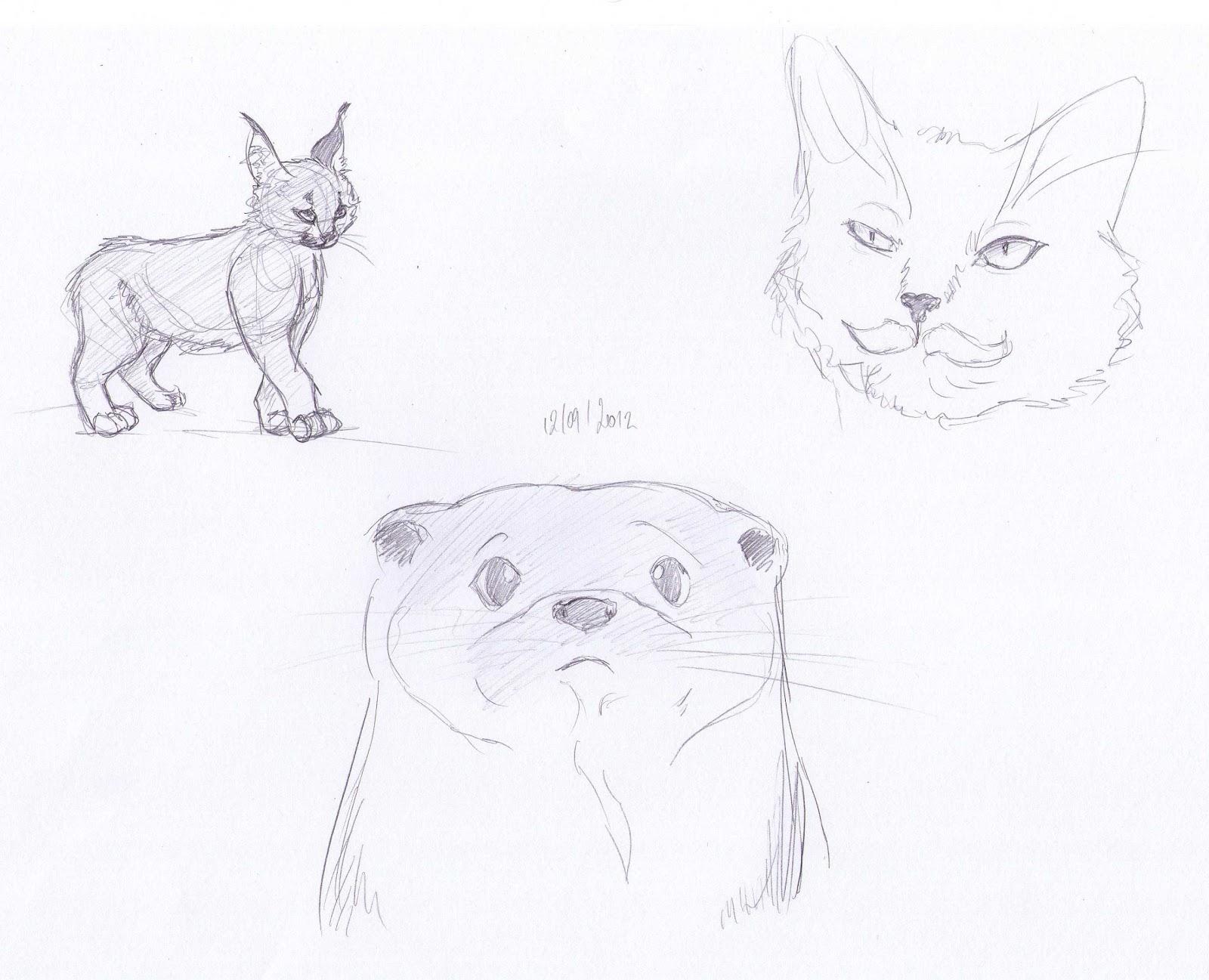 Blog de claire matz croquis d 39 animaux divers - Croquis animaux ...