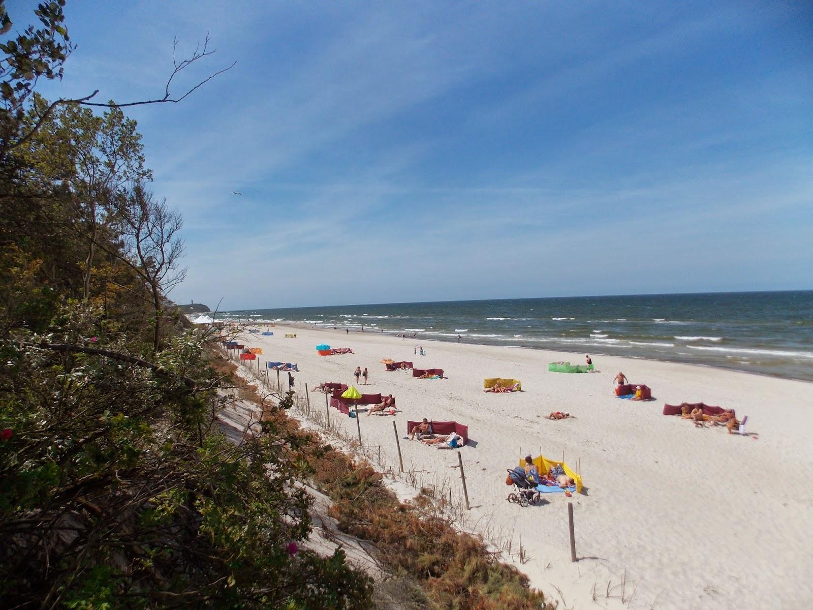 Plaża ogorzelica