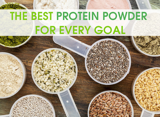 THE BEST PROTEIN POWDER