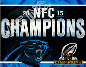 NFC SOUTH 2014 Champs!