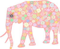 Elefante floral - Criação Blog PNG-Free