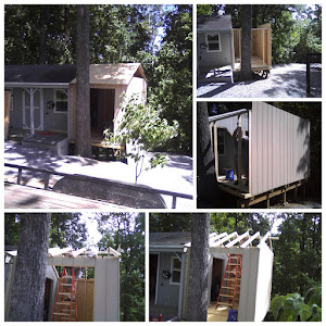 The shed is coming along.