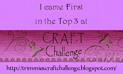 challenge 290
