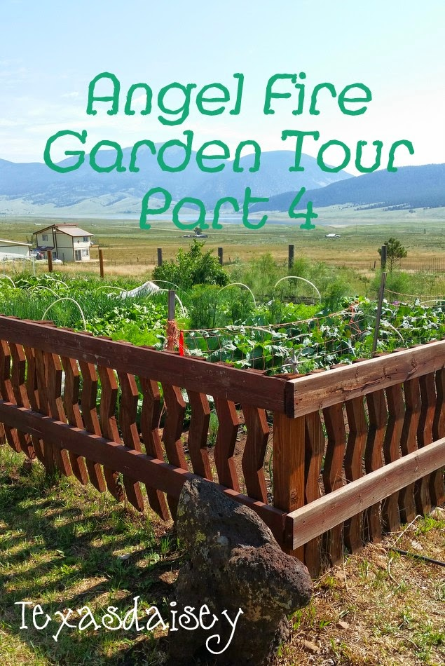 The Angel Fire Garden and Cabin Tour Part 4