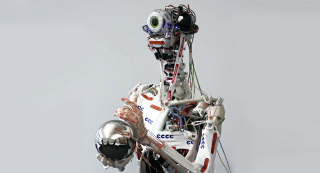 Eccerobot