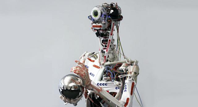 Eccerobot
