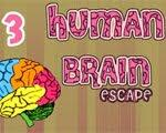Solucion Human Brain Escape 3