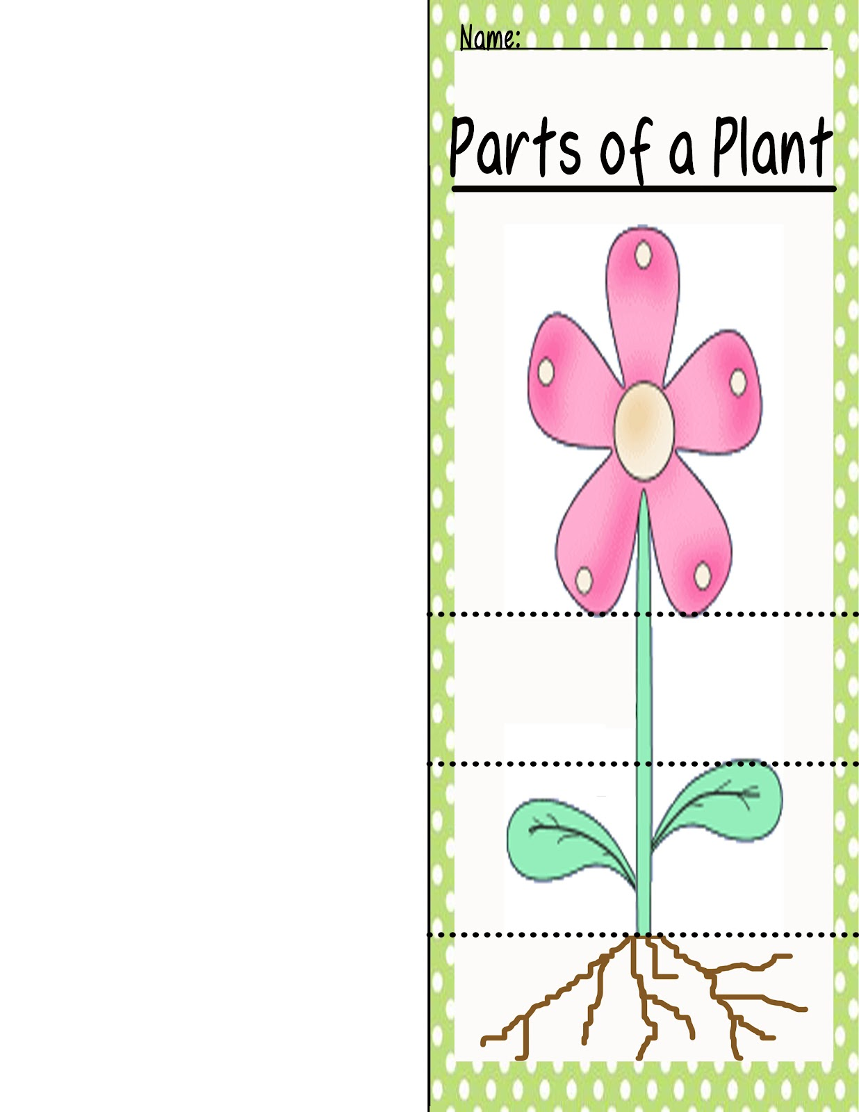 Plant Parts Used for Food http://polkadotsandteachingtots.blogspot.com/2012/07/50-follower-giveaway-structures-of.html