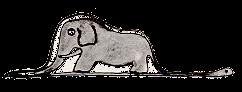 A boa swallowed an elephant