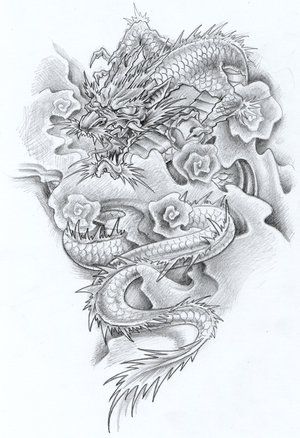 Dragon Tattoo on Halaah Io  Dragon Tattoo Designs For Girls