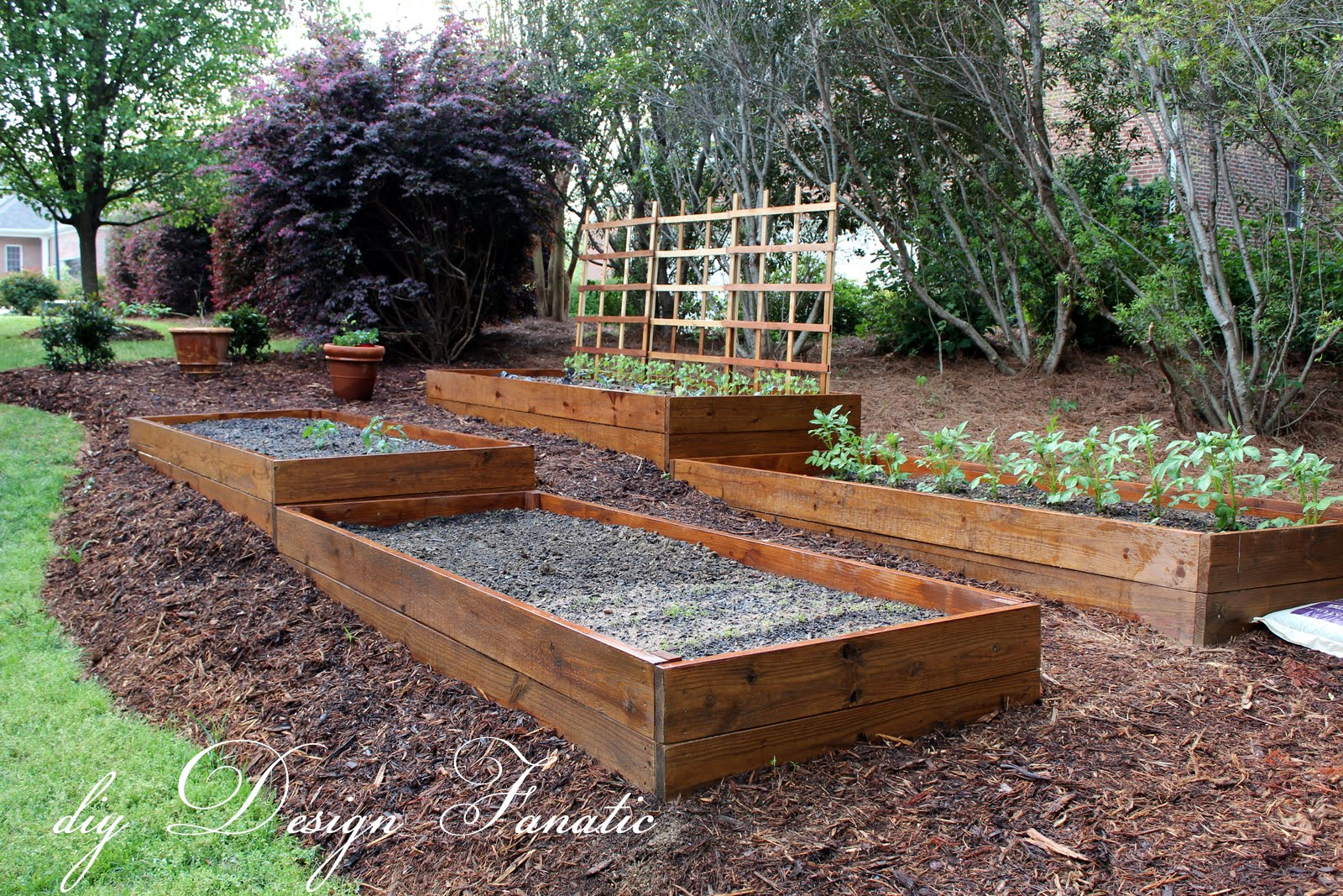 Diy design fanatic raised beds Raised garden beds