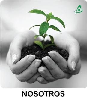 Consultora de Medio Ambiente- Empres Ambiental - Proyectos de Medio Ambiente