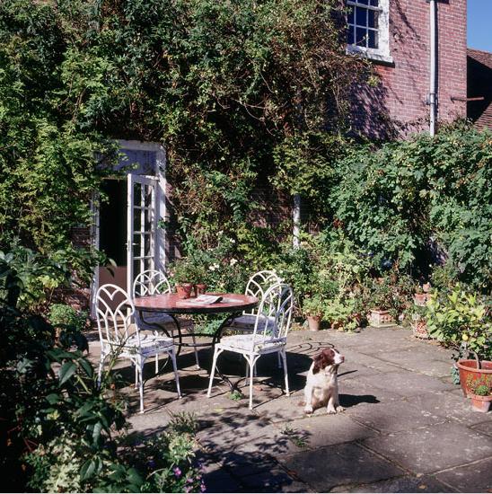 Grigiopanna in giardino for Disegni cortile anteriore per semplice casa ranch