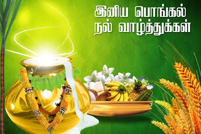 Pongal 2016 greetings