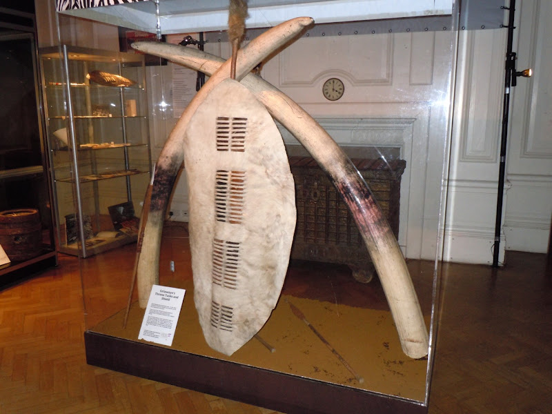 Cetawayo's throne tusks and shield Zulu